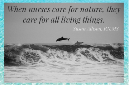 Susan Allison nature care